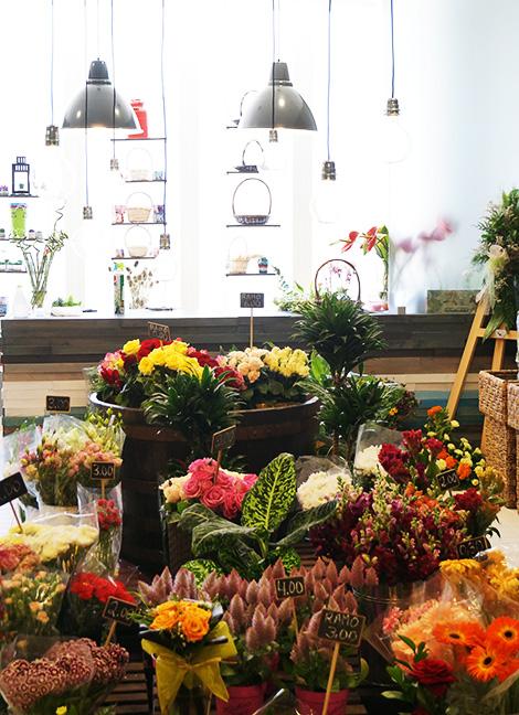 flores-mercado-bom-sucesso-bebespontocomes