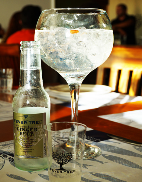 ginger-beer-fever-tree-bebespontocomes