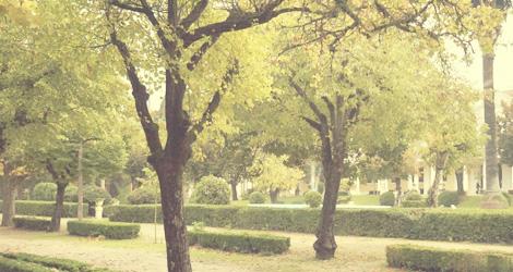 jardins-termas-curia-bebespontocomes