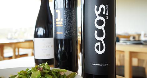 vinho-douro-ecos-quinta-da-sequeira-restaurante-museu-coa-bebespontocomes