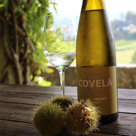 avesso-quinta-covela-baiao-vinho-wine-verde-bebespontocomes