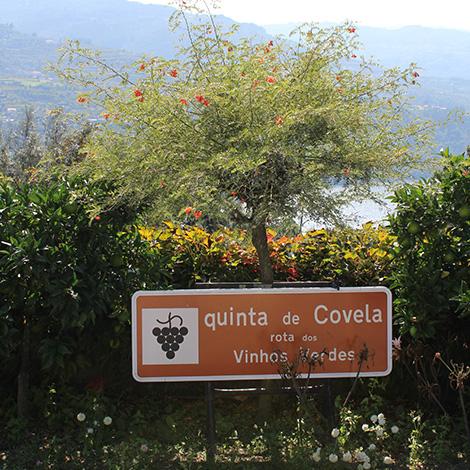 chegada-quinta-covela-baiao-douro-vinho-verde-bebespontocomes