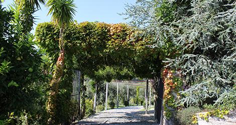 entrada-quinta-covela-adn-vinhos-verdes-baiao-bebespontocomes