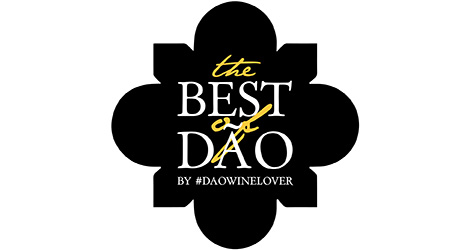 logotipo-pedro-moreira-design-pedromoreiradesign-the-best-of-dao-daowinelover-bebespontocomes