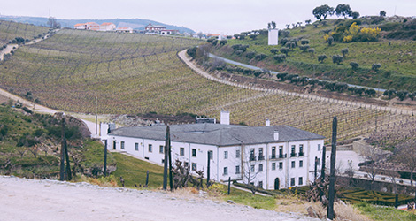 baixela-quinta-cidro-vinhas-douro-real-companhia-velha-sao-joao-da-pesqueira-palacio-alvarinho-bebespontocomes