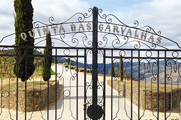 Carvalhas Vintage Tour