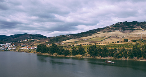 rio-douro-pinhao-real-companhia-velha-vintage-tour-bebespontocomes
