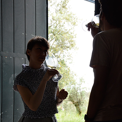 casa-mouraz-rocks-vinho-dao-2011-biologico-bebespontocomes
