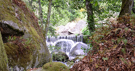 paisagem-queda-agua-casa-mouraz-2011-biologico-dao-tondela-bebespontocomes
