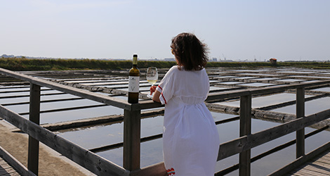 vista-pit-stop-vinho-alentejo-herdade-esporao-verdelho-2014-aveiro-salinas-bebespontocomes