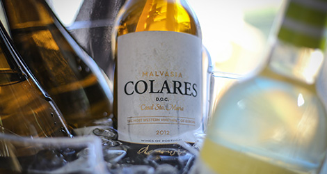 ambiente-wine-sessions-bebespontocomes-prova-vinhos-aveiro-bebes-comes-festa-casal-santa-maria-colares-malvasia-2012