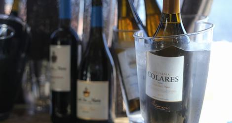 ambiente-wine-sessions-bebespontocomes-prova-vinhos-aveiro-bebes-comes-festa-colares-santa-maria-malvasia