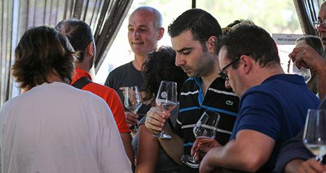 ambiente-wine-sessions-bebespontocomes-prova-vinhos-aveiro-bebes-comes-festa-luis-pato-quinta-tourais