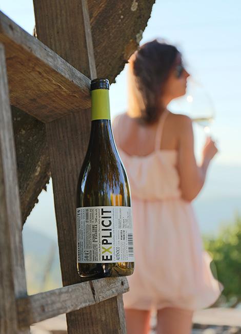 o-tesouro-vinho-alentejo-explicit-2014-vinhas-velhas-hotel-quinta-casaldronho-douro-lamego-valdigem