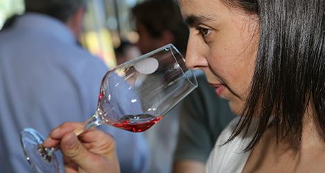 quinta-do-portal-douro-bebespontocomes-wine-sessions-aveiro-fonte-nova