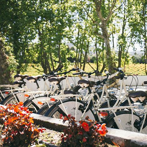 a-luz-da-quinta-da-pacheca-douro-vinho-porto-branco-tinto-restaurante-wine-hotel-bebespontocomes-bicicletas