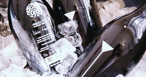 apresentacao-vinho-bebes-comes-bebespontocomes-galeria-dama-aflita-porto-wine-dao-lucia-freitas-art-iustracao-andre-da-loba-bebespontocomes-fresco