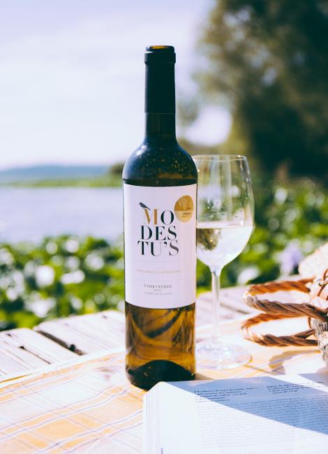 minimalismo-vinho-verde-arinto-azal-modestus-2014-pateira-aveiro-bebespontocomes-grande-wine