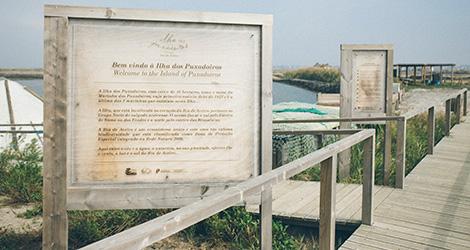 ilha-dos-puxadoiros-tony-martins-ostras-sushi-ria-aveiro-sal-salinas-salicornia-bebespontocomes-paineis-entrada
