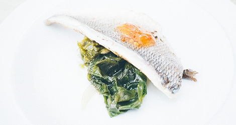 ilha-dos-puxadoiros-tony-martins-ostras-sushi-ria-aveiro-sal-salinas-salicornia-bebespontocomes-peixe
