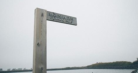 ilha-dos-puxadoiros-tony-martins-ostras-sushi-ria-aveiro-sal-salinas-salicornia-bebespontocomes-placa-salinas