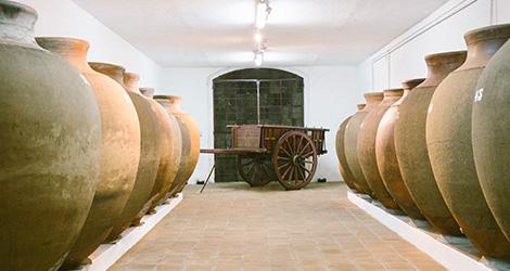 carroca--vinho-j-jose-sousa-2011-adega-jose-maria-da-fonseca-janela-indiscreta-bebespontocomes