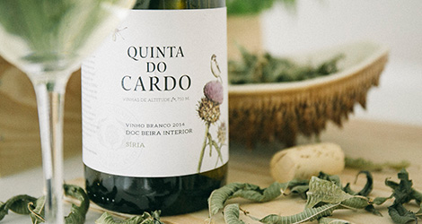 pormenor-quinta-do-cardo-beira-interior-siria-2014-vinho-you-oughta-know-bebespontocomes