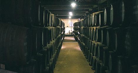 pipas-adega-grahams-symington-caves-douro-quinta-vesuvio-douro-vinho-porto-caves-gaia-bebespontocomes