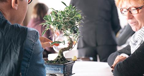 dessert-bonsai-restaurante-casa-cha-boa-nova-chef-rui-paula-leca-palmeira-porto-siza-vieira-bebespontocomes