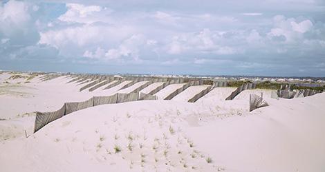 notas-salgadas-colares-vinho-casal-santa-maria-malvasia-2012-praia-dunas-areao-bebespontocomes