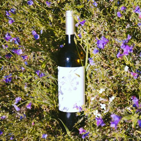 quadrada-flower-power-vinho-verde-casa-arrabalde-linhares-da-beira-garrafa-bebespontocomes