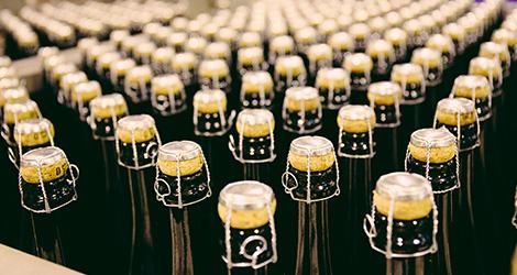 rectangular-capsulas-casa-da-cerveja-super-bock-unicer-museu-prova-beer-fabrica-unidade-fabril-porto-bebespontocomes