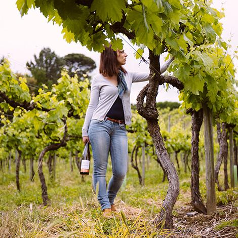 quadrada-vinhas-ready-to-go-vinho-verde-quinta-de-lourosa-alvarinho-arinto-2014-visita-prova-vertical-turismo-rural-lousada-bebespontocomes