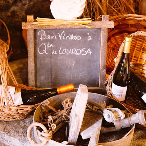 quadrada-welcome-ready-to-go-vinho-verde-quinta-de-lourosa-alvarinho-arinto-2014-visita-prova-vertical-turismo-rural-lousada-bebespontocomes
