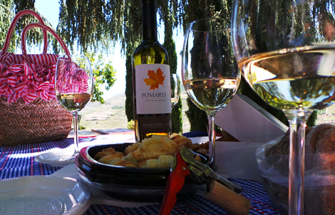 wine-nique-quinta-nova-bebespontocomes
