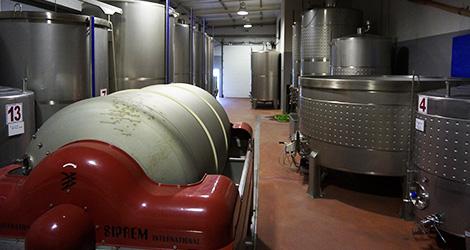 vinificacao-quinta-popa-douro-vinho-adega-bebespontocomes