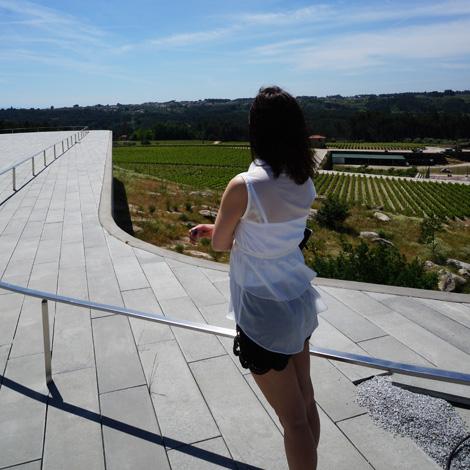 quinta-de-lemos-paisagem-carvalho-araujo-arquitectura-silgueiros-bebespontocomes