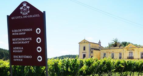 entrada-quinta-gradil-serra-montejunto-vinha-vinho-lisboa-cadaval-vilar-viognier-bebespontocomes