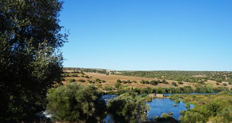 paisagem-less-is-more-herdade-vau-alentejo-vinho-riso-rio-guadiana-bebespontocomes