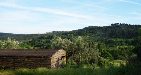 quinta-boavista-paisagem-tavares-pina-penalva-castelo-bebespontocomes