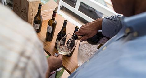 dao-sul-vinhos-quinta-cabriz-casa-santar-quinta-encontro-lourosa-bairrada-alentejo-vinho-verde-wine-sunset-bebespontocomes