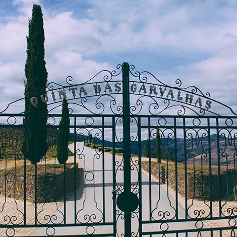 entrada-portao-quinta-das-carvalhas-vinho-branco-douro-2010-real-companhia-velha-pinhao-bebespontocomes