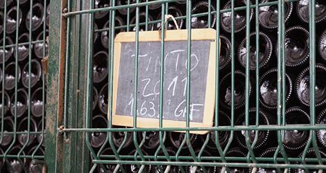 vinho-douro-tinto-2011-adega-quinta-dona-berta-sousao-luxo-bebespontocomes