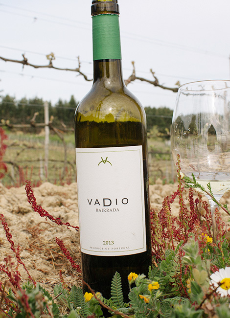 vinho-vadio-bical-cercial-2013-bairrada-vadiagem-vinhas-bebespontocomes