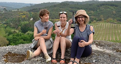 vinho-casa-mouraz-2011-biologico-rocks-bebespontocomes