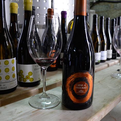vinho-elfa-casa-mouraz-dao-tondela-bebespontocomes