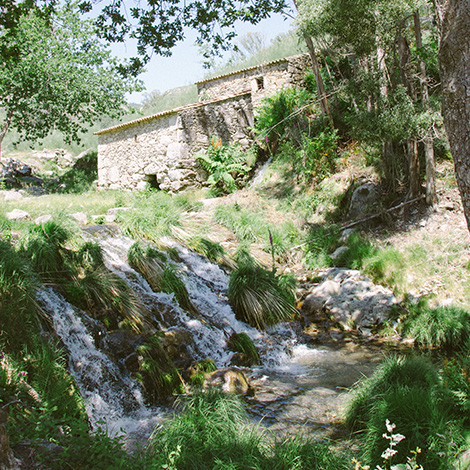 moinhos-paisagem-#delmaralatierra-bluscus-rosal-moinos-picon-folon-bebespontocomes