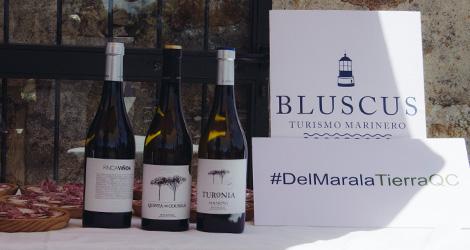 vinho-quinta-de-couselo-rosal-rias-baixas-espanha-albarinho-loureiro-2013-bluscus-maridaje-delmaralatierraqc-bebespontocomes