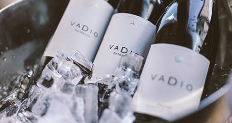 ambiente-wine-sessions-bebespontocomes-prova-vinhos-aveiro-bebes-comes-festa-vadio-bairrada