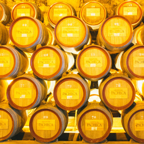 a-luz-da-quinta-da-pacheca-douro-vinho-porto-branco-tinto-restaurante-wine-hotel-bebespontocomes-pipas-adega